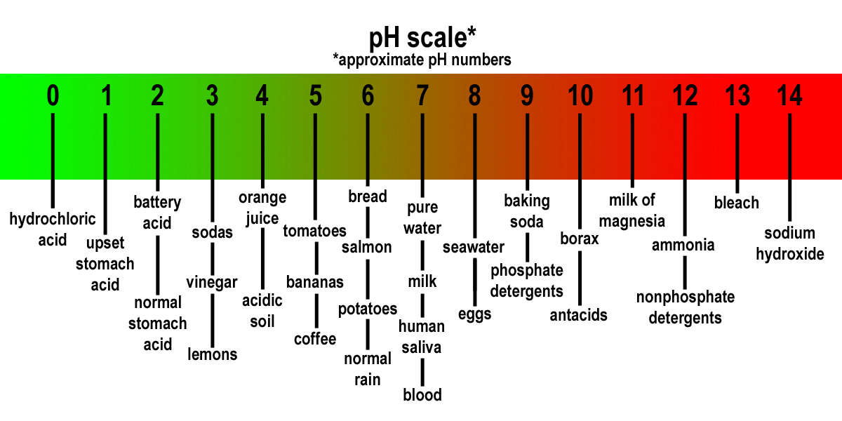 Using pH as a Health Monitor : Get Well Stay Well At Home